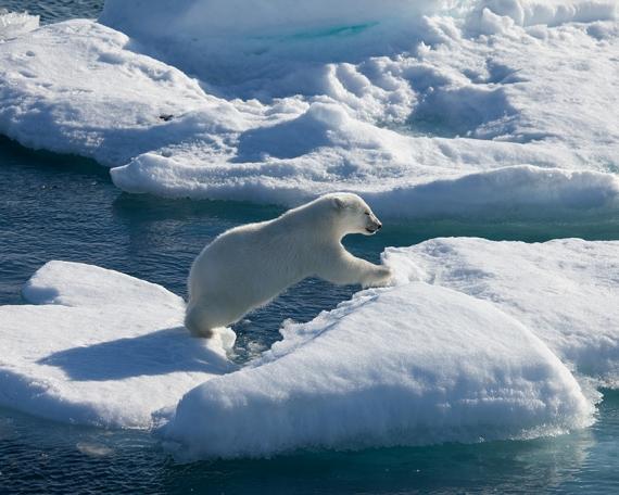 Arctic Home Case Study