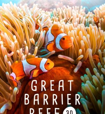 Great Barrier Reef 3D