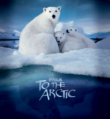 To the Arctic (3D/2D)