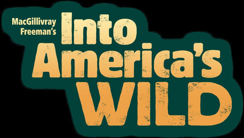 Into America S Wild Macgillivray Freeman