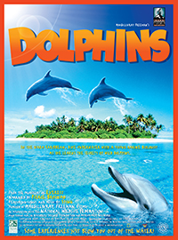 Dolphins-sm