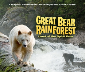 Ryan Reynolds to narrate GREAT BEAR RAINFOREST