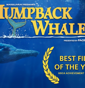 """Humpback Whales"" Wins Best Film of the Year at the GSCA Film Awards"