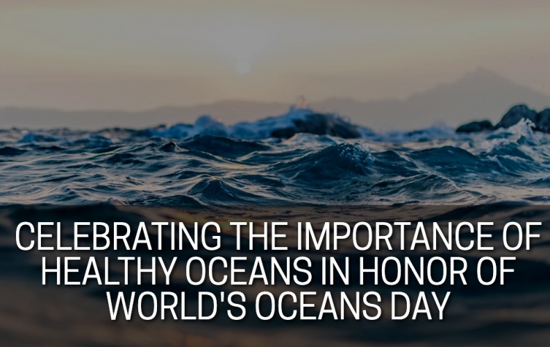 Celebrating the Importance of Healthy Oceans in Honor of World Oceans Day